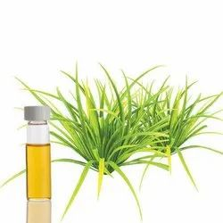 Citronella Essential Oil Java