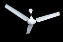Metal White Pooja Ecoplus Bldc Ceiling Fan, Sweep Size: 1200 Mm