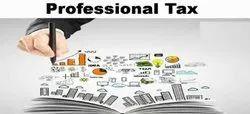 Professional Tax Return Filing