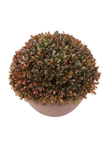 Artificial Brown Topiary with Pot, Height: 20 cm