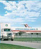 International Logistic