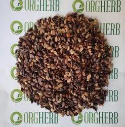 ORGHERB Awla Seeds, Packaging Size: 50kg, Packaging Type: Hdpe And Pp Bags