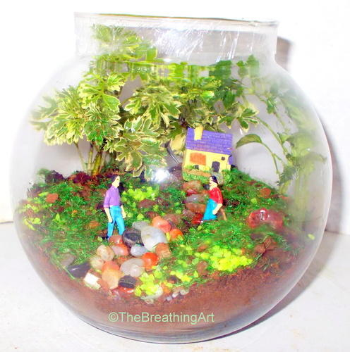 Round Glass Terrarium The Breathing Art Manufacturer In