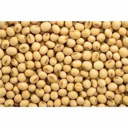 Soybean, Pack Size: 25kg-50kg