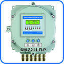 Dual Channel Gas Monitor with LCD