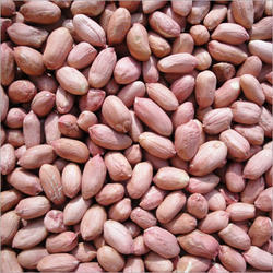 Raw Peanut Kernel, Packaging Type: Sacks, Packing Size: 5 - 50 Kg