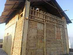 Residential Bamboo Farm House