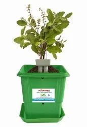 10 Self Watering Planter With Indicator