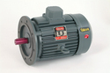 2 Hp Electric Flange Motor 3ph