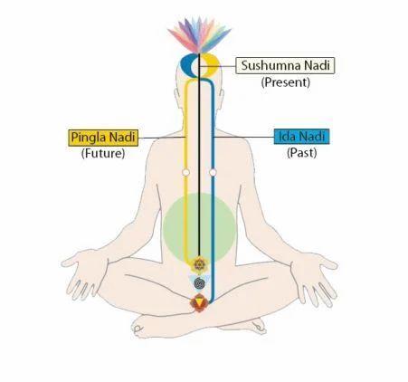 Sahaja Yoga Meditation Centre In Andheri East Mumbai Id 14520039312