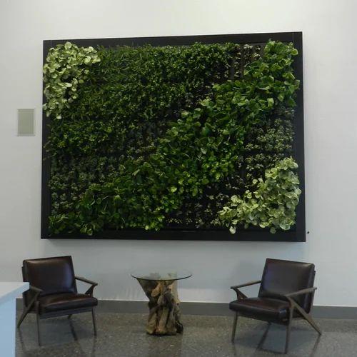 Vertical Designer Indoor Wall Garden À¤µà¤° À¤Ÿ À¤•à¤² À¤— À¤° À¤¡à¤¨ R S Enterprises New Delhi Id 20420776397