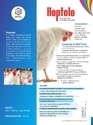 Liver Powder for poultry