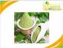 Moringa Extract