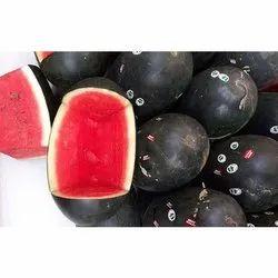 Sugar kig Organic Watermelon
