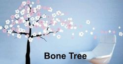 Big Stencils Bone Tree