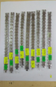 SSGJ Blood Pressure Control Magnetic Bracelet Shree Shyam Gems And Jewellery