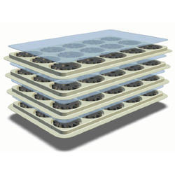 Rigid Plastic Tray