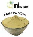 Amla Powder, Packaging Size: 227 Gram