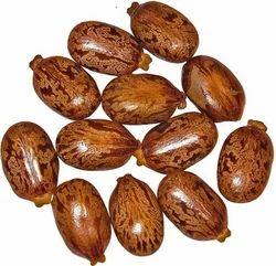 Castor Natural Seeds