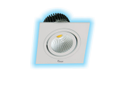 16W LED Cob Spot Light (White And Warm White)