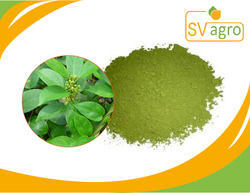 SV Agro Gymnema Sylvestre Leaf Dry Extract, Packaging Type: PP Polybags, HDPE Drums