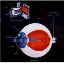Cataract Treatment Services