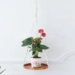 Macrame Hanging Plants Pot Holders