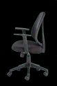 Taurus Low Back Mesh Chair