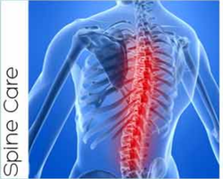 Spine Care Services