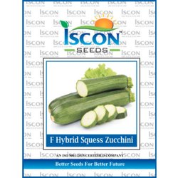 Iscon F Hybrid Squess Zucchini Seeds, Packaging Type: Packet, Packaging Size: 500g