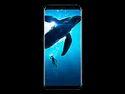 Galaxy S8 Plus Smartphone