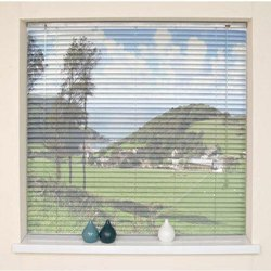 Printed Window Roller Blind