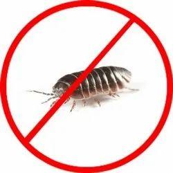 Pill Bug Control Services