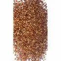 Hedge Lucerne Seeds