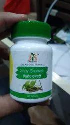 jk pharama Giloy Gan Vati, Tablet