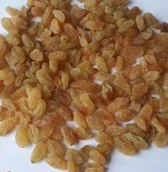 Dried Golden Raisin, Packaging Type: Sacks, Packaging Size: 1kg
