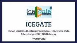 Icegate Portal Registration