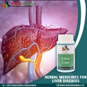 Herbal Liver Medicines
