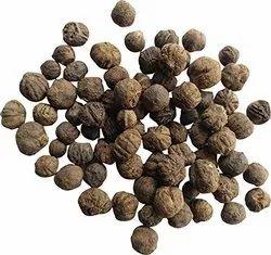 Silk Cotton Seeds