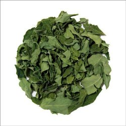 Moringa Leaves Products - 100% Pure Organic Moringa