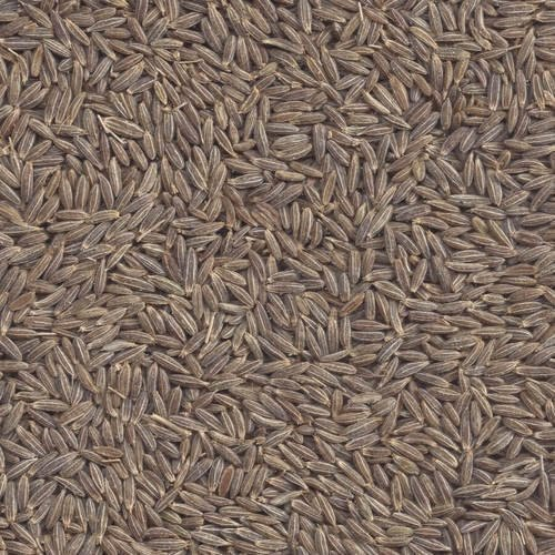 Cumin Seeds Singapore Quality 99.5%