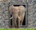 Single Elephant Tiles