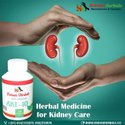 Chronic Kidney Disease Herbal Medicine
