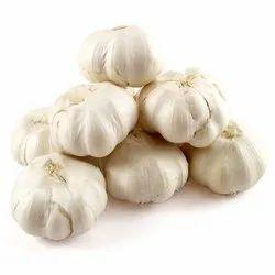 B Grade Fresh Garlic, Packaging Size: 25 Kg