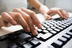 10 To 1 Month Online Data Entry Service