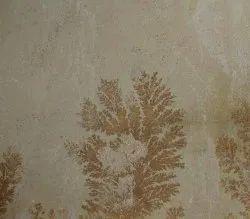 Fossil-Mint-Sandstone