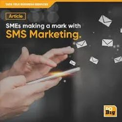 Bulk Sms Solutions Services, For Promotional
