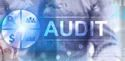 Consultation Audit Services For Bsci
