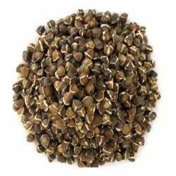 Moringa Miracle Tree Seeds