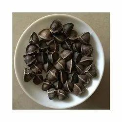 Wingals Moringa Seed